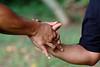 ai lima nui (thumb dislocation) (50)