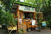 curio stand along the Road to Hana