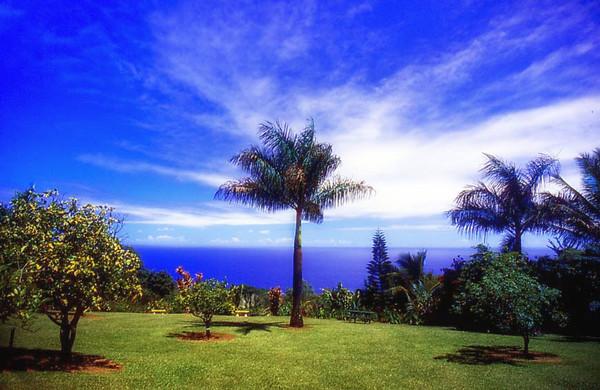 garden, Hana, Maui
