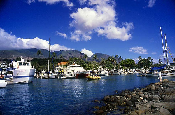 Lahaina Harbor and West Maui Mountains, Maui