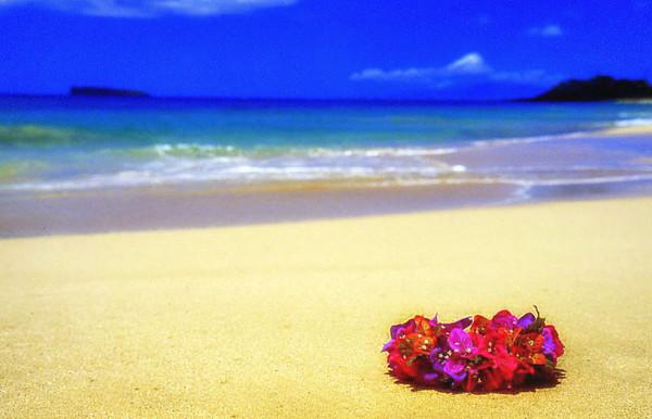 flower head-lei on beach, Maui