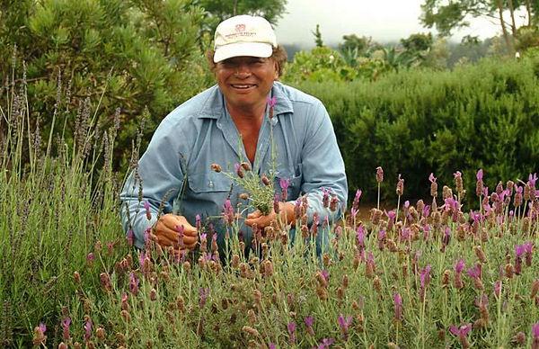 Ali'i Kula Lavender Farm, Upcountry Maui