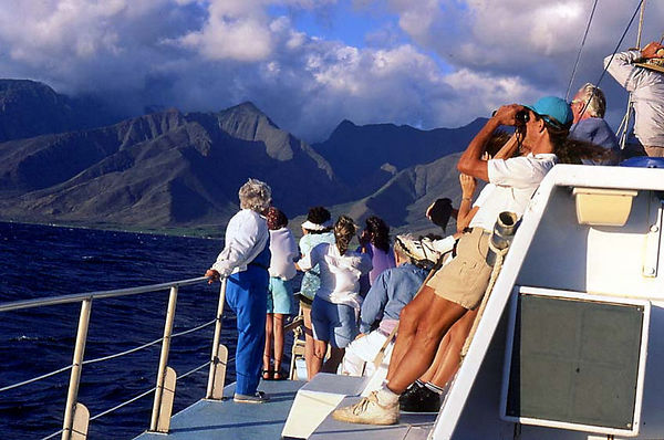 Actor Lloyd Bridges (blue windbreaker, white pants, in center of photo) and other visitors enjoy a whale-watching cruise off West Maui.
