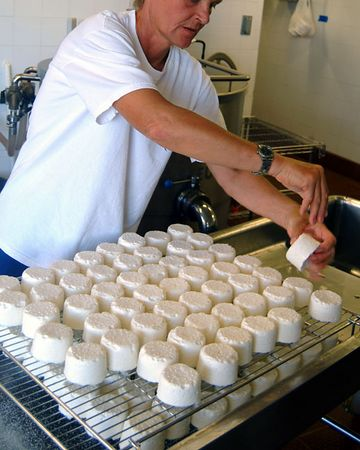 salting goat cheese, Surfing Goat Dairy, Maui