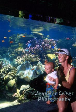 mother and baby enjoying marine life at the Waikiki Aquarium