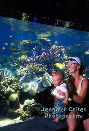 mother and baby enjoying marine life at the Waikiki Aquarium