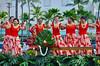 Hula at the Aloha Festivals Parade