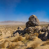 Panoramic Stand of Stone Boulders in Desert