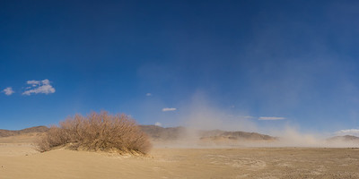 Empty Sand Desert with Blowing Wind
