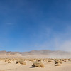 Mojave Desert Brush Panorama