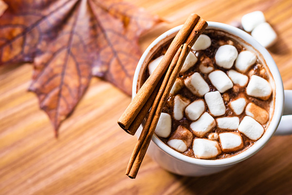 Hot Chocolate on a Table for Autumn