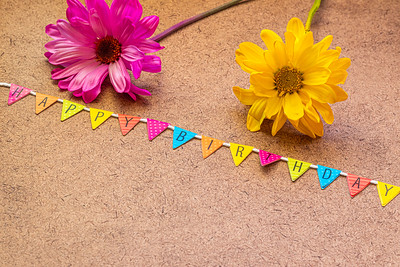 Happy Birthday Text with Daisies on a Brown Background