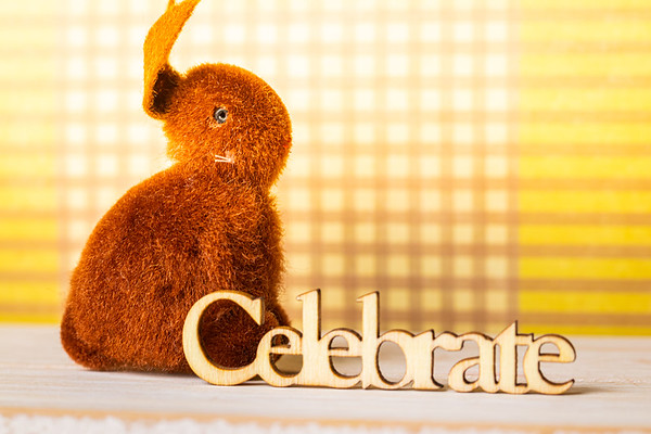 Brown Easter Bunny and Celebrate Text on a Yellow Background