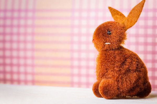Brown Easter Bunny on a Pink Background