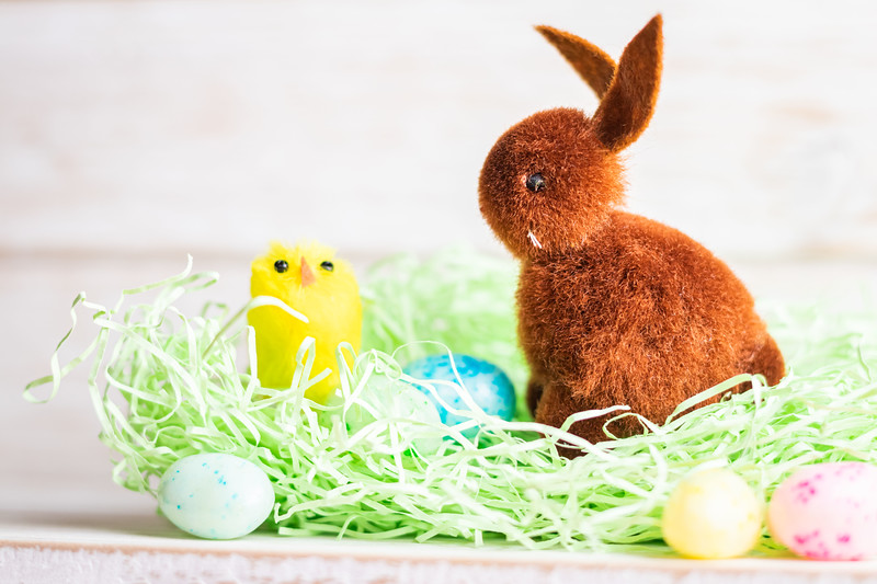 Brown Easter Bunny on a White Background