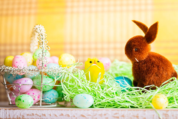 Brown Easter Bunny and Jelly Beans on a Table