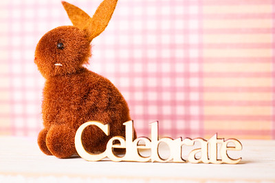 Brown Easter Bunny and Celebrate Text on a Pink Background