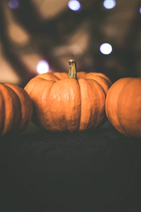 Orange Mini Pumpkins Against a Black Background