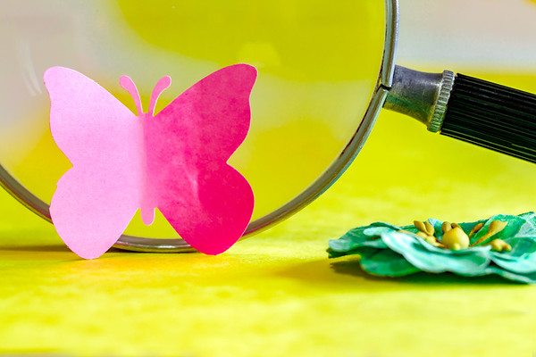 Pink Paper Butterfly On a Yellow Background