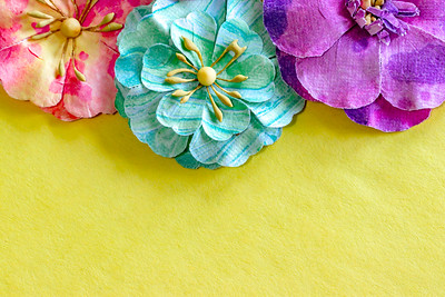 Colorful Spring Flowers on a Yellow Background