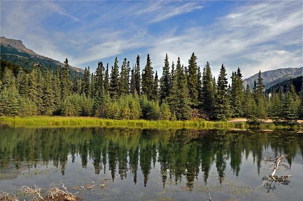 Alaska 316