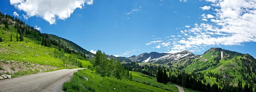 Green Rocky Mountains