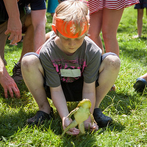20130704_frogs-9828