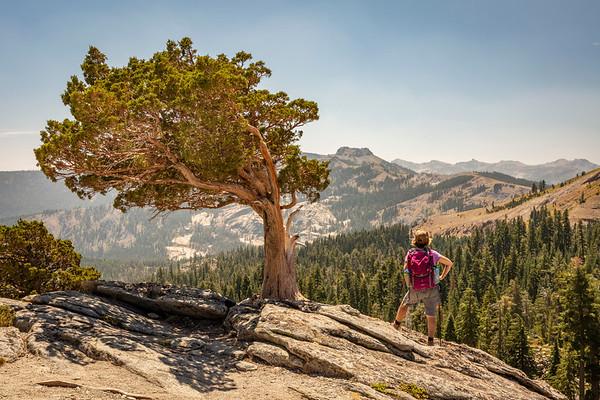 Donner Peak Hiker
