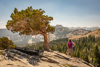 Donner Peak Hiker