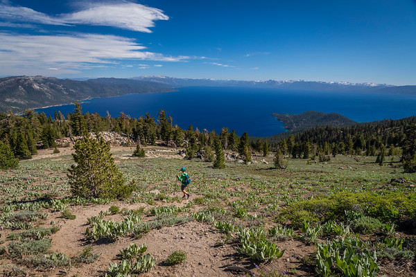 Lake Tahoe Hiker
