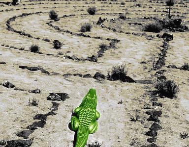 Alligator labyrinth
