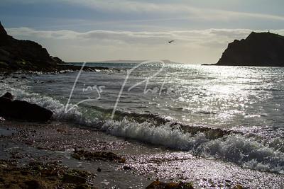 Dorset Holiday 2015_094