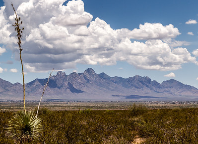 Organ Mountains-4