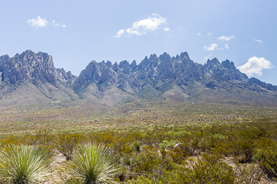 Organ Mountains-3