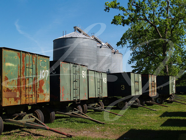 Three large grain silos behind a number of peanut wagons and a mature pecan grove in south Georgia.