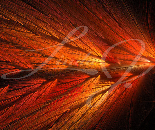 Red and orange fractal that looks like feathered wings.