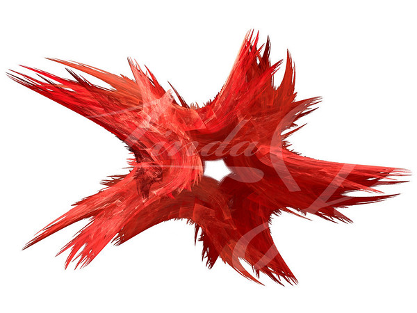 Patriotic swirling red fractal star on a white background.