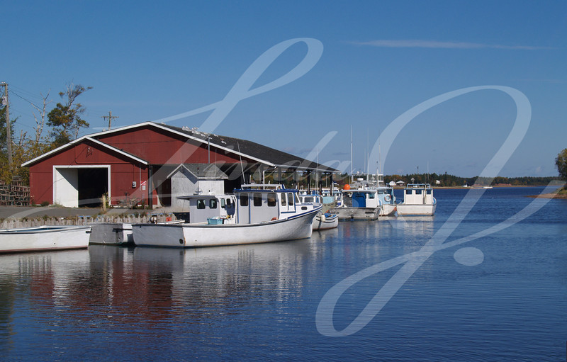 Fishing boats sitting in a harbor on Prince Edward Island.