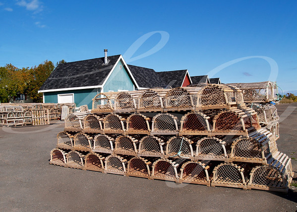 Lobster Traps on the Wharf