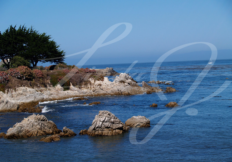 California Coastline Park--A Park along the coast, south of Santa Barbara, California.
