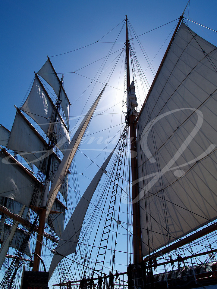 Sunny Star of India--Sun shining behind the mast of the Star of India.