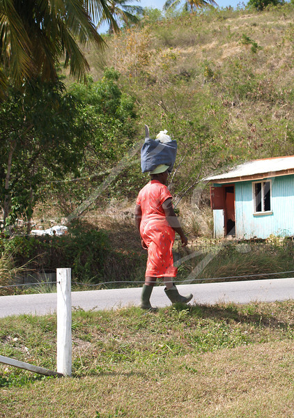 Editorial Only, No model release available---A woman in Antigua Barbuda in the Caribbean Lesser Antilles West Indies with a bundle on her head walking down the road.
