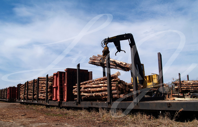 Crane loading cut logs on a railcar.