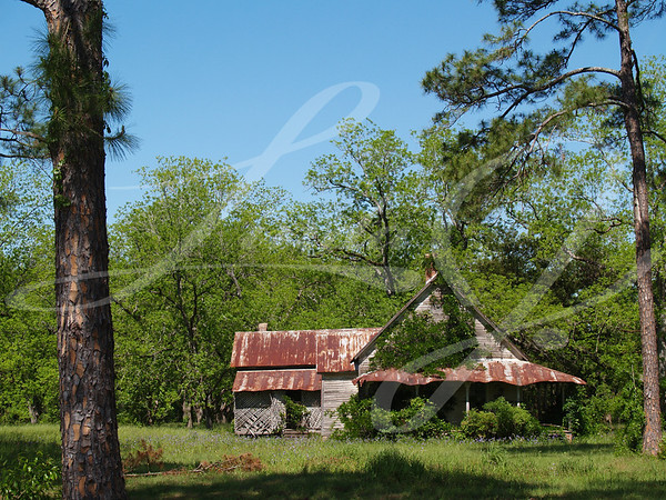 Old weathered, abandoned, historic home in south Georgia with a tin roof that is close to falling down.