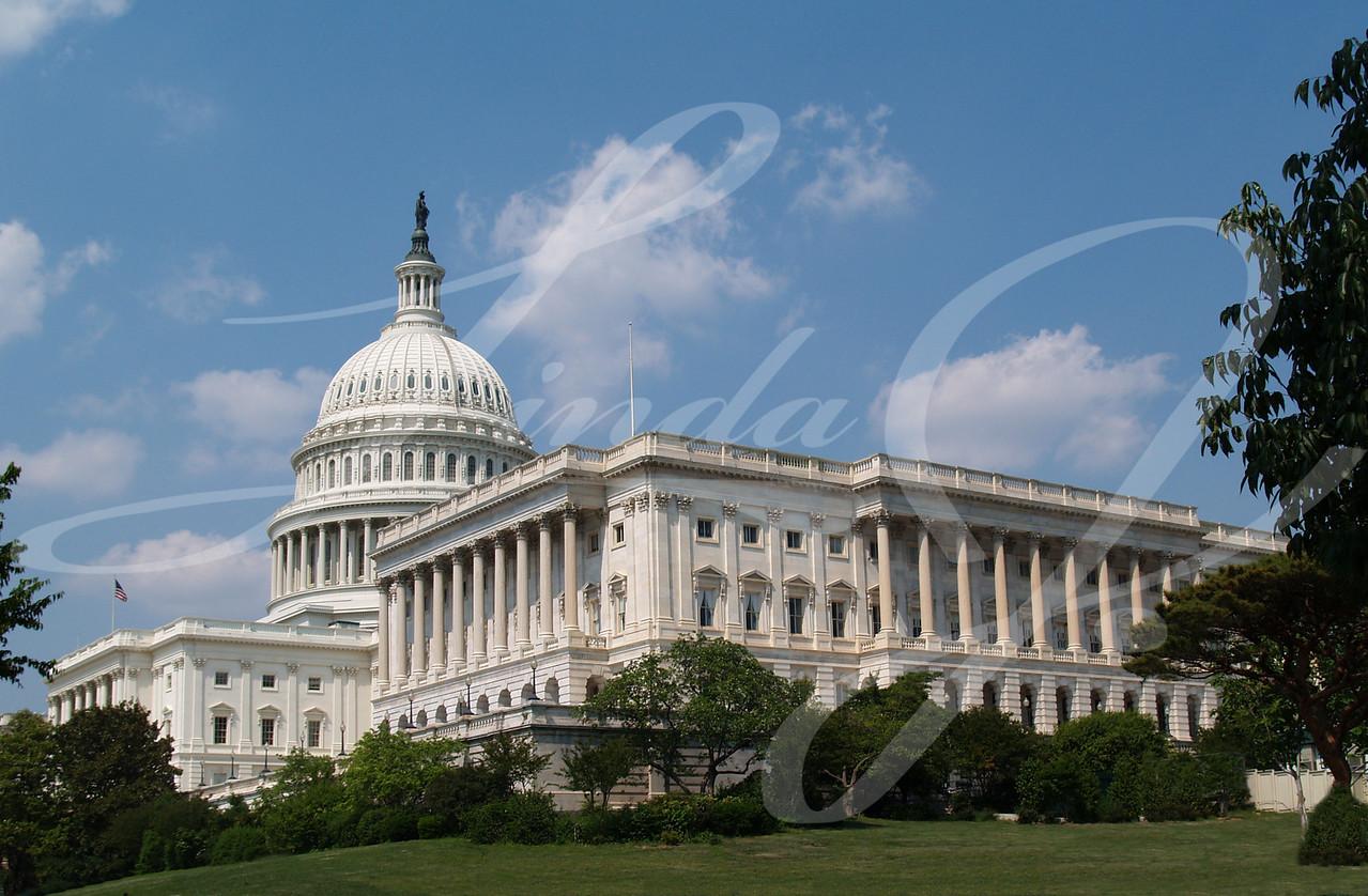 USA capitol building in Washington DC