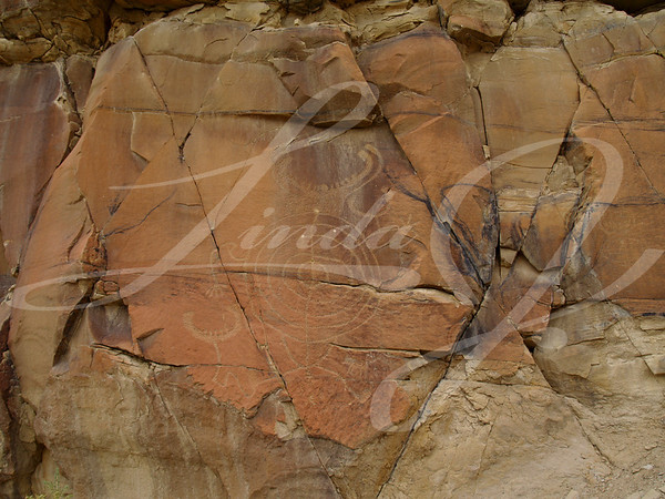 Weather worn indian petroglyphs in central Wyoming near Thermopolis.