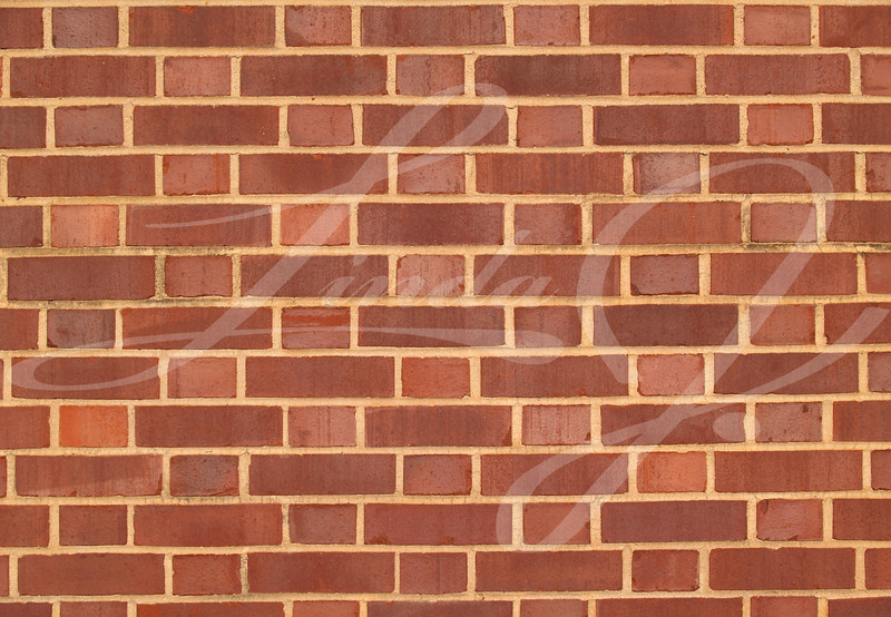 Old brick  exterior wall with Red and brown duo-sized bricks.