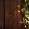 Christmas tree branch and lights
