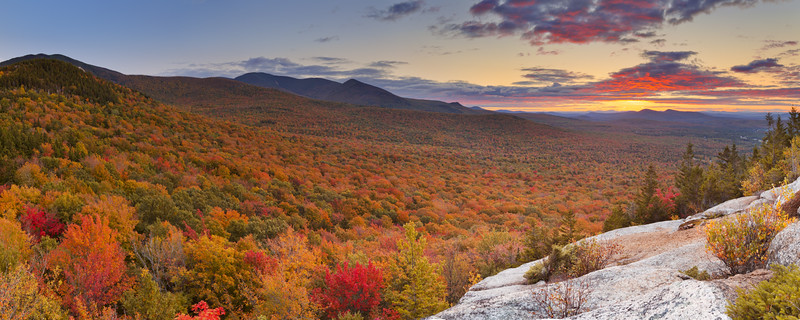Endless forests in fall foliage at sunset, New Hampshire, USA