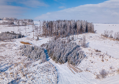 Aerial view of spruce tree in deforested landscape